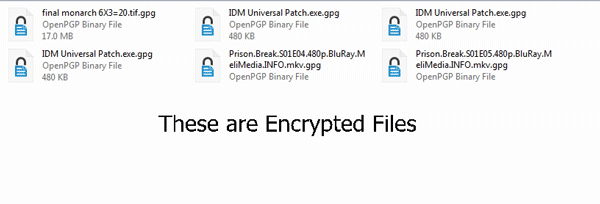 Gpg Decrypt